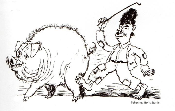 varkens
